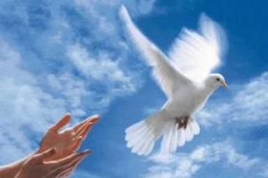 Sứ giả hòa bình
