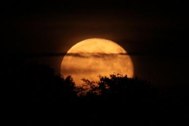 Chuyện Thiền: Không trộm được mặt trăng