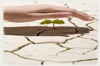 Sự tương tác giữa đức tin và công bình trong những vấn đề môi trường