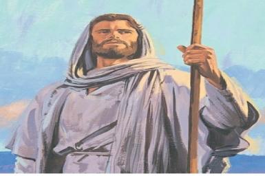 Tìm kiếm Nước Thiên Chúa: Tin Mừng CN XIII TN bằng hình ảnh