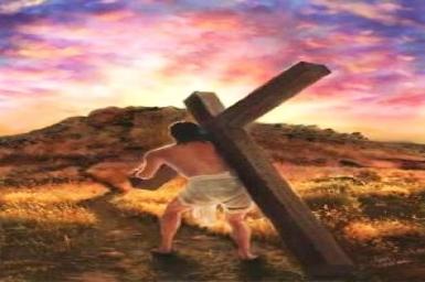 Vác thập giá theo Chúa: Tin Mừng CN XXIV TN bằng hình ảnh