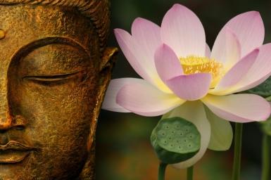 Pháp môn niệm Phật sự hành trì theo giáo lý PGHH